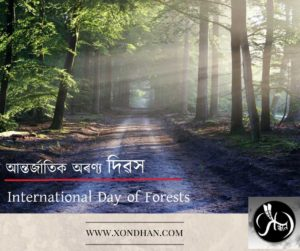21st March International-Day-of-Forests | Xondhan