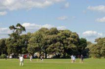 xondhan cricket